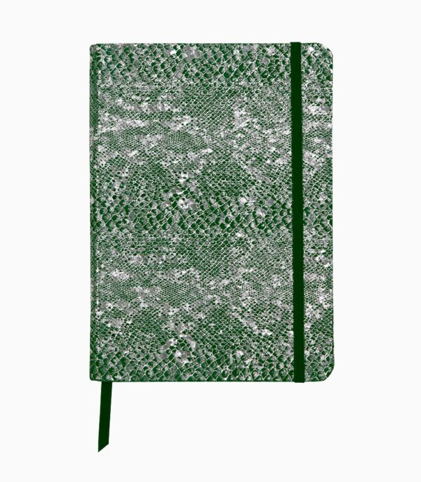 Notebook coperta moale piele, A5, Clairefontaine Celeste Green laser + Silver