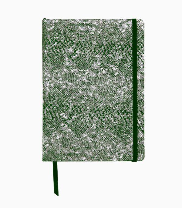 Notebook coperta tare piele, A5, Clairefontaine Celeste Green laser + Silver